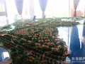 新汇东海岸项目现场