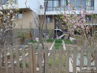 格林风景联排别墅340平295万 前后院 前院30平 后院60平 精装