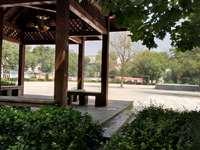 东城三村1楼2室1厅,63平方,实验学校附近