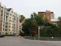 东营市东城东辰鉴墅8楼,137平带车位,精装修,三室二厅一卫