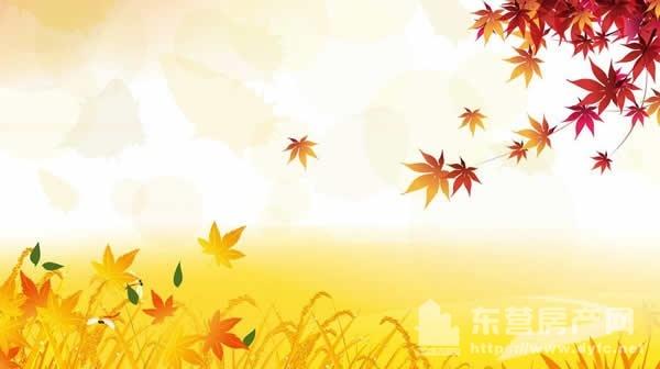 秋天1.jpg