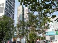 东城阳光100城市丽园14楼带储藏室精装122平72万,带家具家电