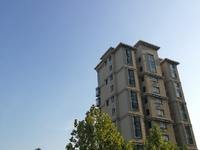 东城 水城国际 二楼带地下室 精装 186平 220万
