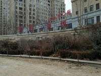 东城悦来新城7楼 面积123平 无车位和地下室简装 99万三室两厅一卫