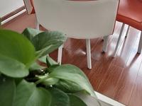 出售榴香园3室2厅1卫121平米105万住宅