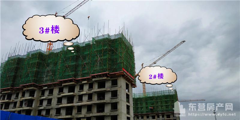 东亚·清风小镇工程进度