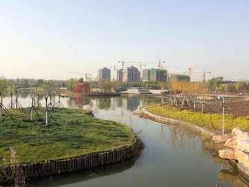 耿井公园实景图