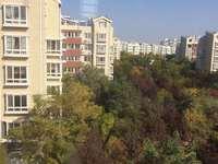 安兴南区3楼140平带地下室3室2厅2卫2.5万出租