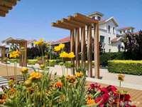 秀水家园联排别墅350平,带前后院,位置优越,交通便利,可改合同,420万